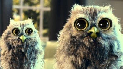 McVitie's Owl TV Advert