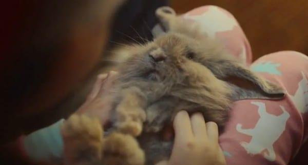McVitie's Victoria Christmas Choir TV Ad rabbit