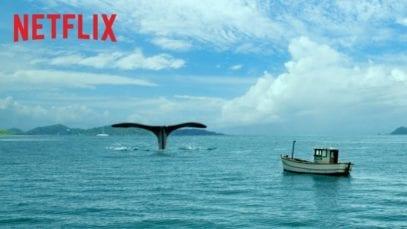Netflix: Big Questions