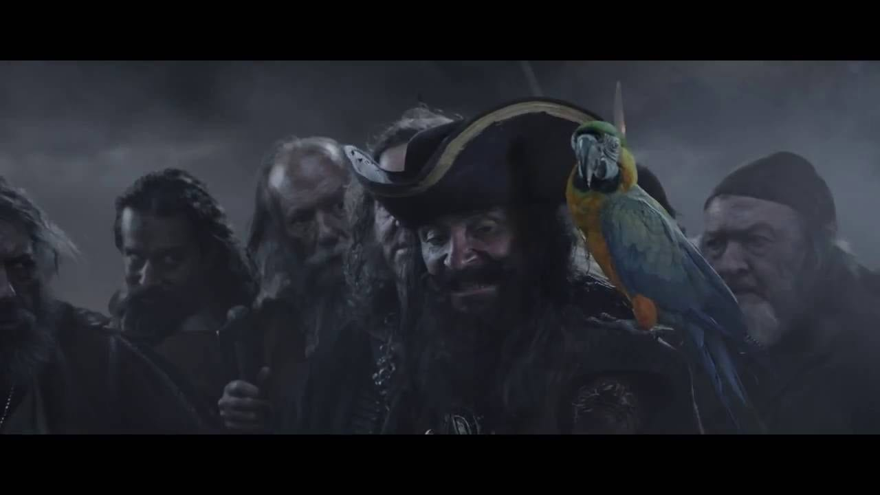 Geico Home Insurance >> GEICO: Parrot - It's What You Do - DAILY COMMERCIALS