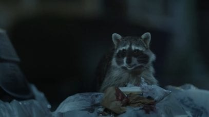 GEICO: Raccoons, C'mon Try It!