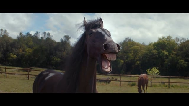 The Best Funny Commercials of 2016 – hilarious adverts
