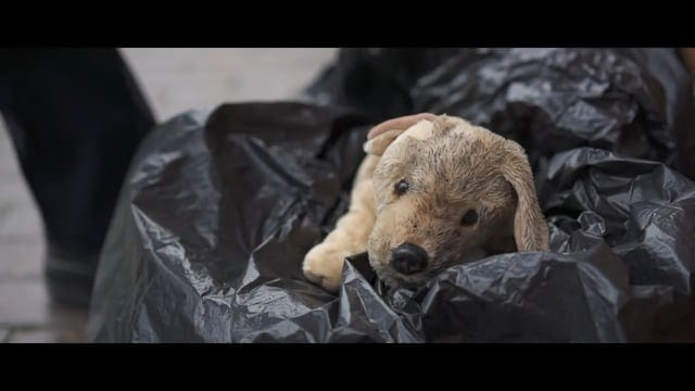 RSPCA: Stars – Christmas advert 2017
