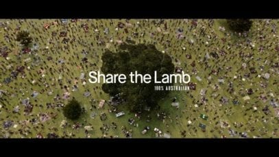Lamb. The Original Social Feed