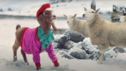 TK Maxx Xmas 2020 – The Lil' Goat